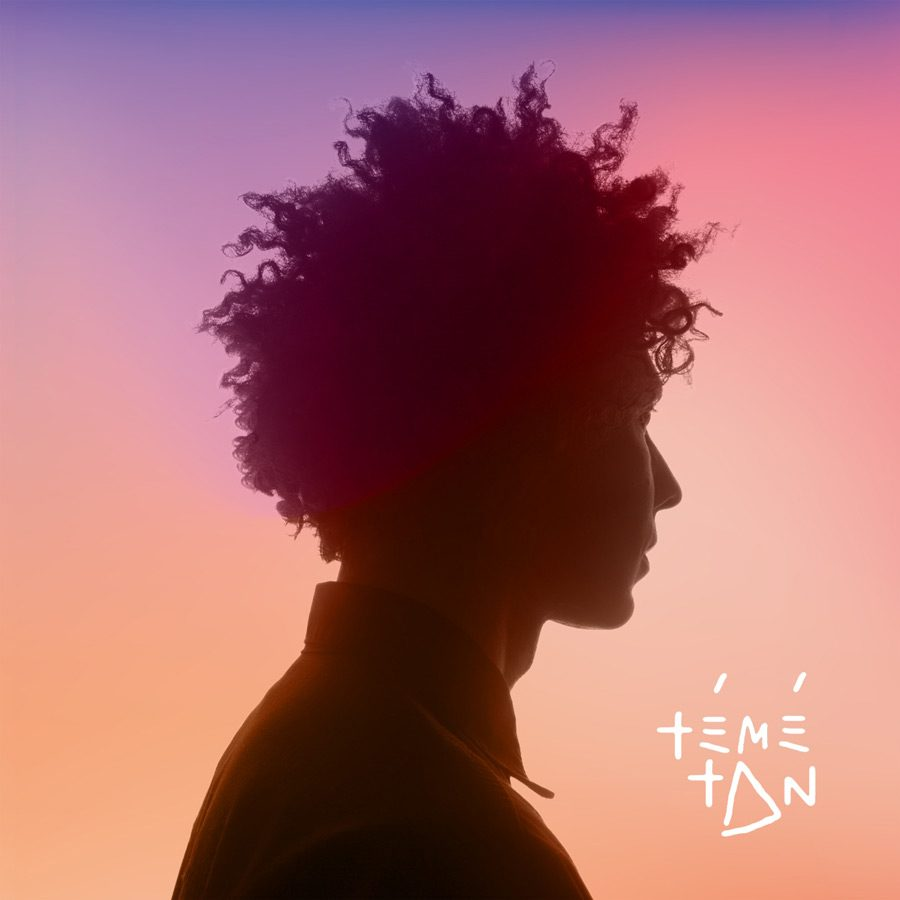 Témé Tan artwork