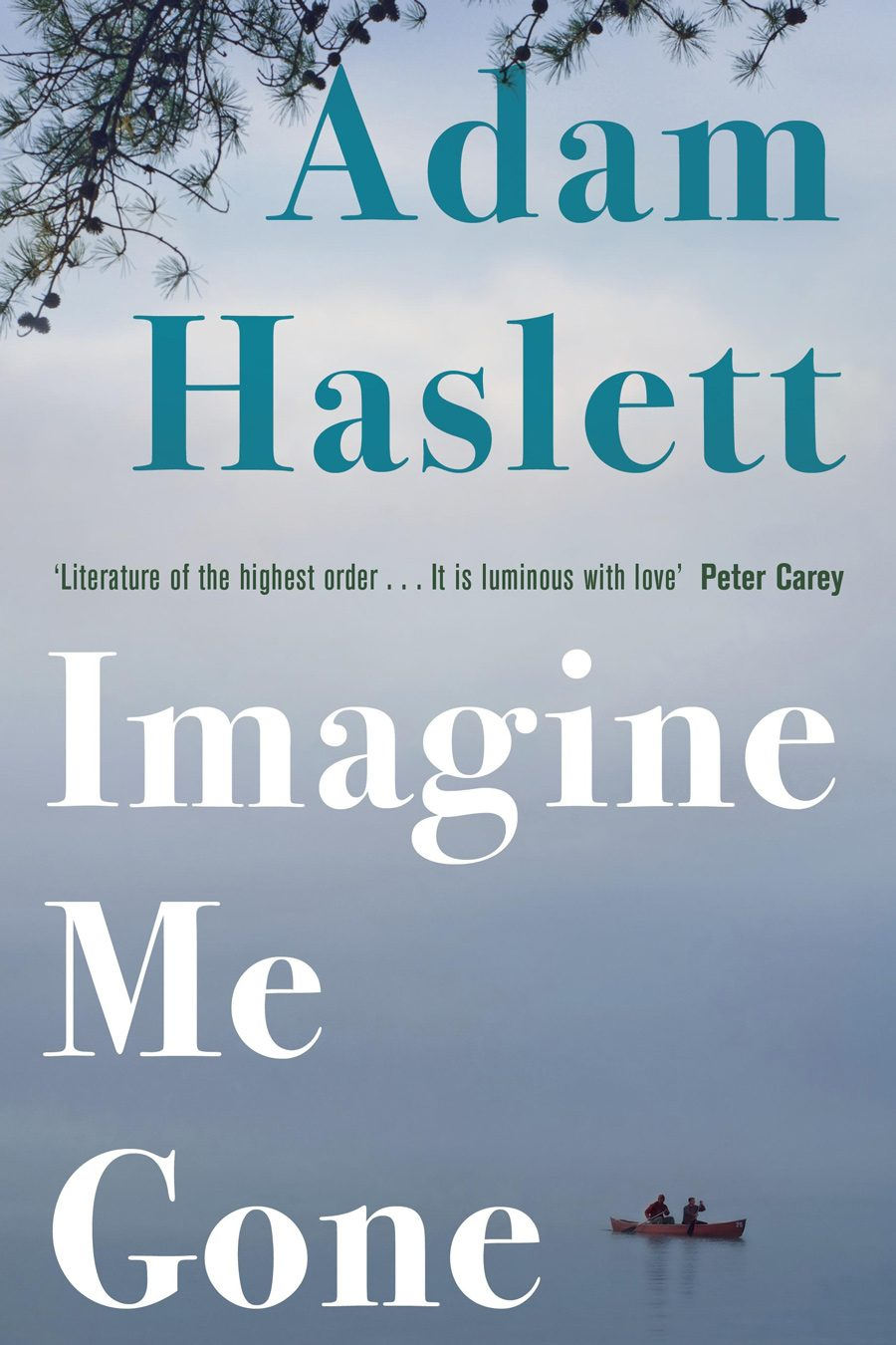Adam Haslett - Imagine Me Gone